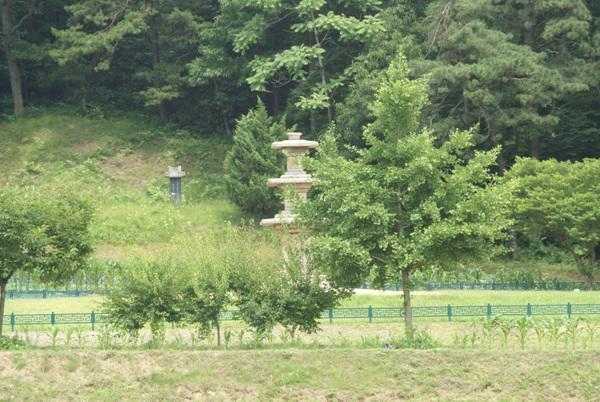 부여 장하리 3층석탑 - 먼 거리(주차장)에서 본 모습