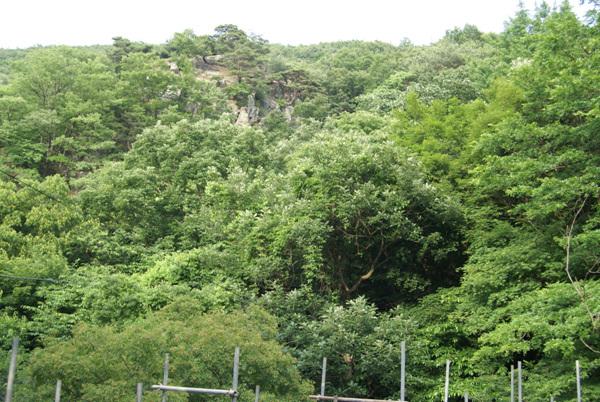 서산 마애삼존불이 있는 용현계곡 외관 - 입구에서