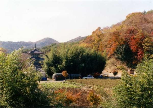 가을 단풍에 둘러쌓인 쌍봉사 전경